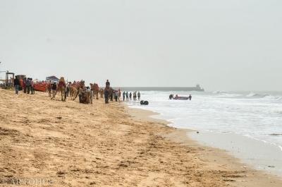 Mandvi Beach