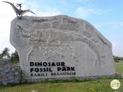 Balasinor Dinosaur Fossil Park & Museum
